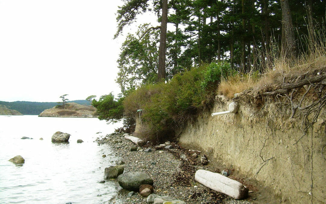 Sperry Point on Lopez Island